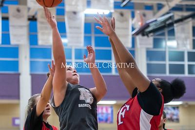Broughton girls basketball vs Wake Forest. November 14, 2019. D4S_9553