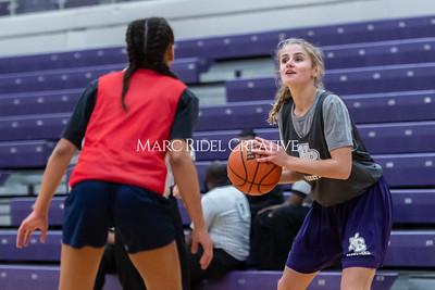 Broughton girls basketball vs Wake Forest. November 14, 2019. D4S_9547