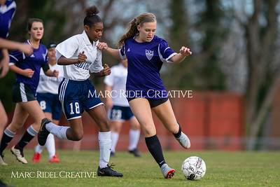 Broughton JV soccer vs Southeast Raleigh. March 13, 2019. D4S_6697