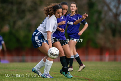 Broughton JV soccer vs Southeast Raleigh. March 13, 2019. D4S_6692