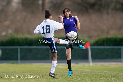 Broughton JV soccer vs Southeast Raleigh. March 13, 2019. D4S_6685