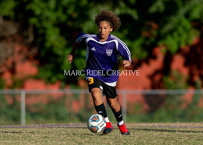 Broughton soccer vs Southeast Raleigh. October 14, 2019. D4S_1340