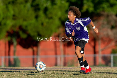 Broughton soccer vs Southeast Raleigh. October 14, 2019. D4S_1451