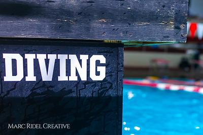 Broughton diving. November 28, 2018, MRC_4108