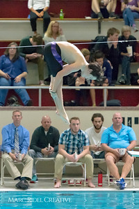 Broughton Diving. January 25, 2018.