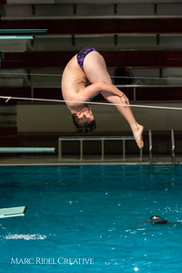 Broughton diving. January 14, 2019. 750_3034