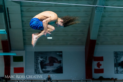 Broughton diving. January 14, 2019. 750_3137