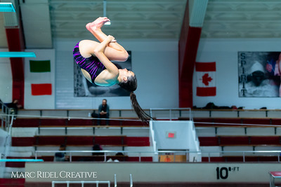Broughton diving. January 14, 2019. 750_3129