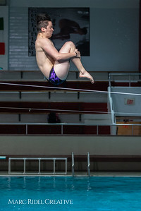 Broughton diving. January 14, 2019. 750_3071