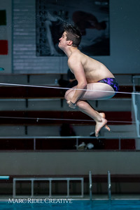 Broughton diving. January 14, 2019. 750_3104