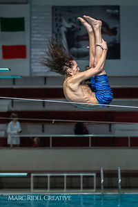 Broughton diving. January 14, 2019. 750_3075