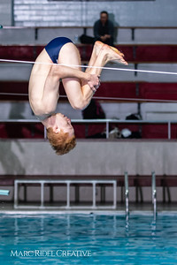 Broughton diving. January 14, 2019. 750_3090