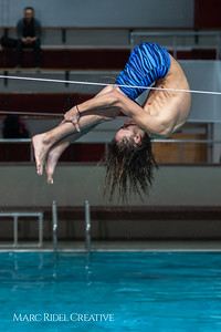 Broughton diving. January 14, 2019. 750_3077