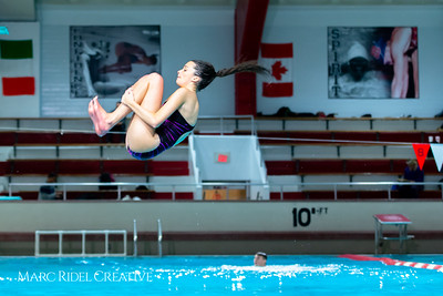 Broughton diving. January 14, 2019. 750_3130