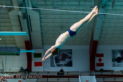 Broughton diving. January 14, 2019. 750_3133