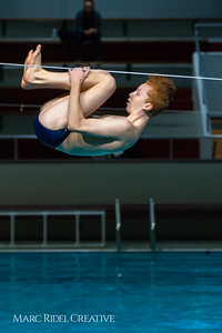 Broughton diving. January 14, 2019. 750_3091