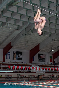 Broughton diving practice. January 7, 2019. 750_1384