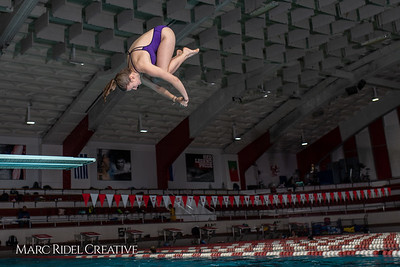 Broughton diving practice. January 7, 2019. 750_1393