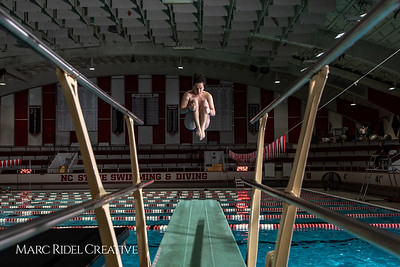 Broughton diving practice. January 7, 2019. 750_1418