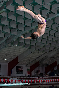 Broughton diving practice. January 7, 2019. 750_1456