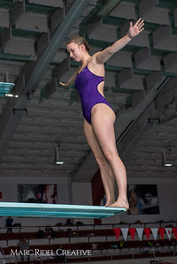 Broughton diving practice. January 7, 2019. 750_1392