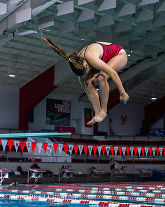 Broughton diving practice. December 7, 2018, MRC_6584