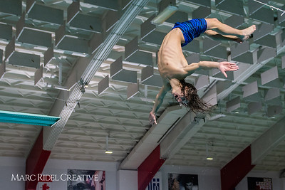 Broughton diving practice. December 7, 2018, MRC_6526