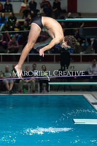 Broughton Dive. December 13, 2019. D4S_6786