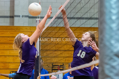 Broughton volleyball vs Southeast Raleigh. October 15, 2019. D4S_2365
