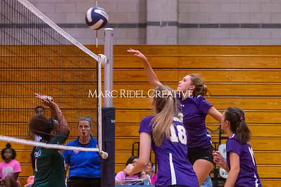 Broughton volleyball vs Southeast Raleigh. October 15, 2019. D4S_2408