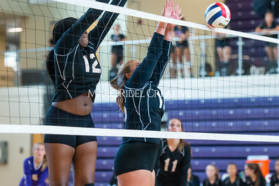 8-20-19 Volleyball00468