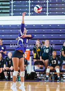 8-20-19 Volleyball00526
