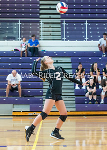 8-20-19 Volleyball00342