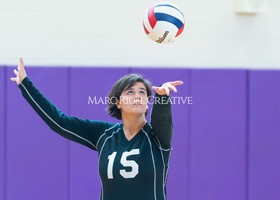 8-20-19 Volleyball00350