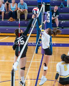 8-20-19 Volleyball00297