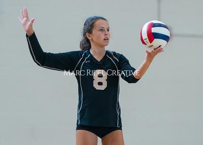 8-20-19 Volleyball00529