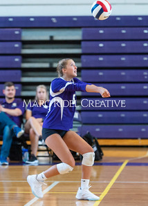 8-20-19 Volleyball00417