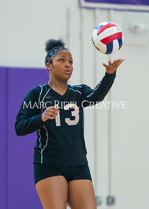 8-20-19 Volleyball00489