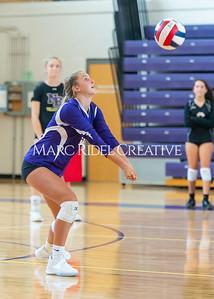 8-20-19 Volleyball00482