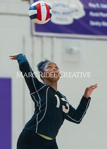 8-20-19 Volleyball00491