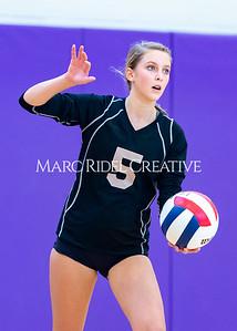 Broughton volleyball vs. Enloe. Senior nIght. October 17, 2019. D4S_3514