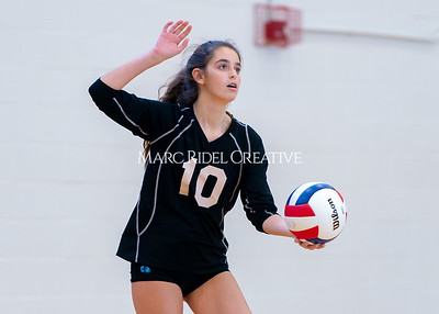 Broughton volleyball vs. Enloe. Senior nIght. October 17, 2019. D4S_3463
