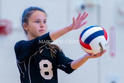 Broughton volleyball vs. Enloe. Senior nIght. October 17, 2019. D4S_3439