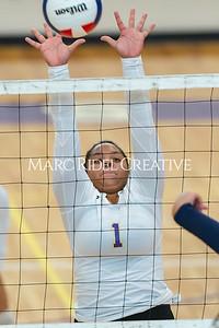 Broughton varsity volleyball vs Leesville. September 26, 2019. D4S_0462