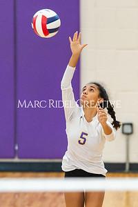 Broughton varsity volleyball vs Leesville. September 26, 2019. D4S_0209