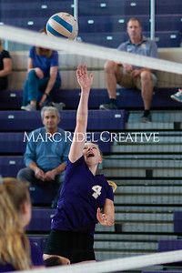 Broughton volleyball vs Pine Forest. Playoffs Round One October 26, 2019. D4S_2055