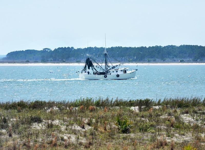 Fishing Boat and Trailing Gulls, Seabrook Island, SC