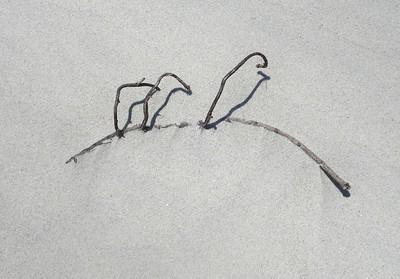 Beach Art, Pawleys Island, SC