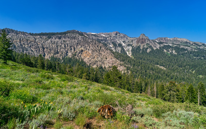 Wolf Creek Canyon and Arnot Peak