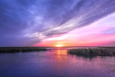 """Texas Wetland Sunset"""